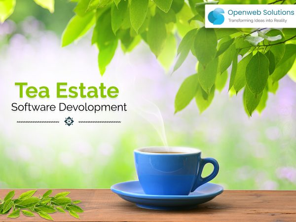 Tea-estate Software Development: 8 Features to Manage Your Estate