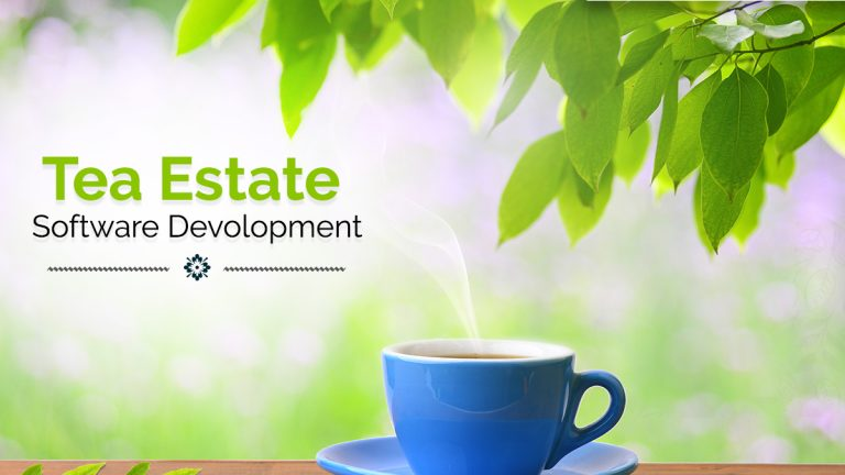 tea-estate software development