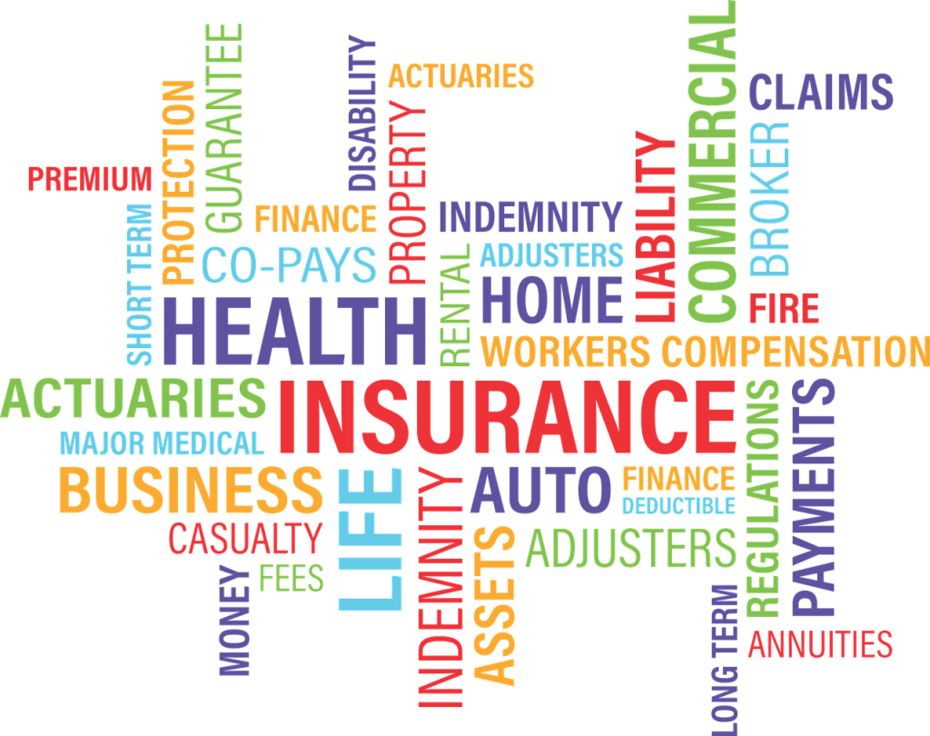Payments insurance website development