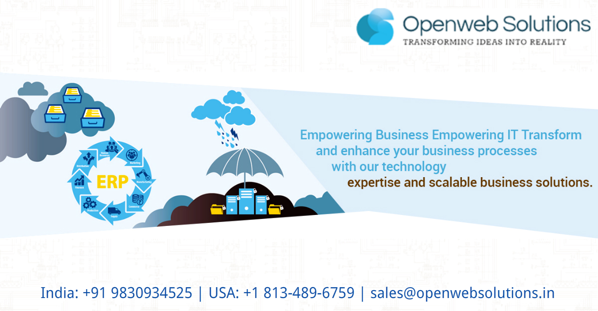 How Customized ERP Solutions are increasing an organization's efficiency