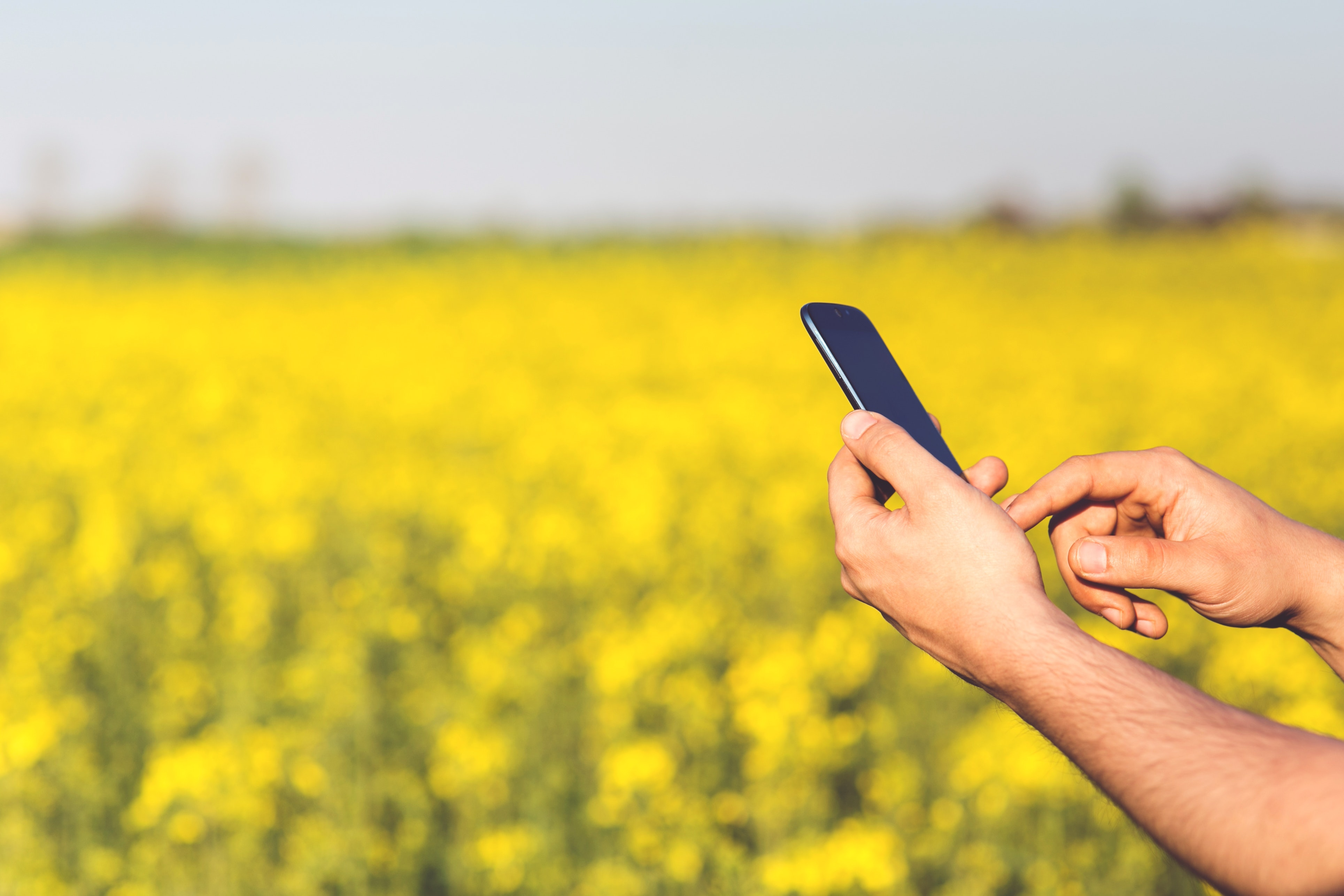 Agriculture App: A Touch of Modern Technology in Agriculture