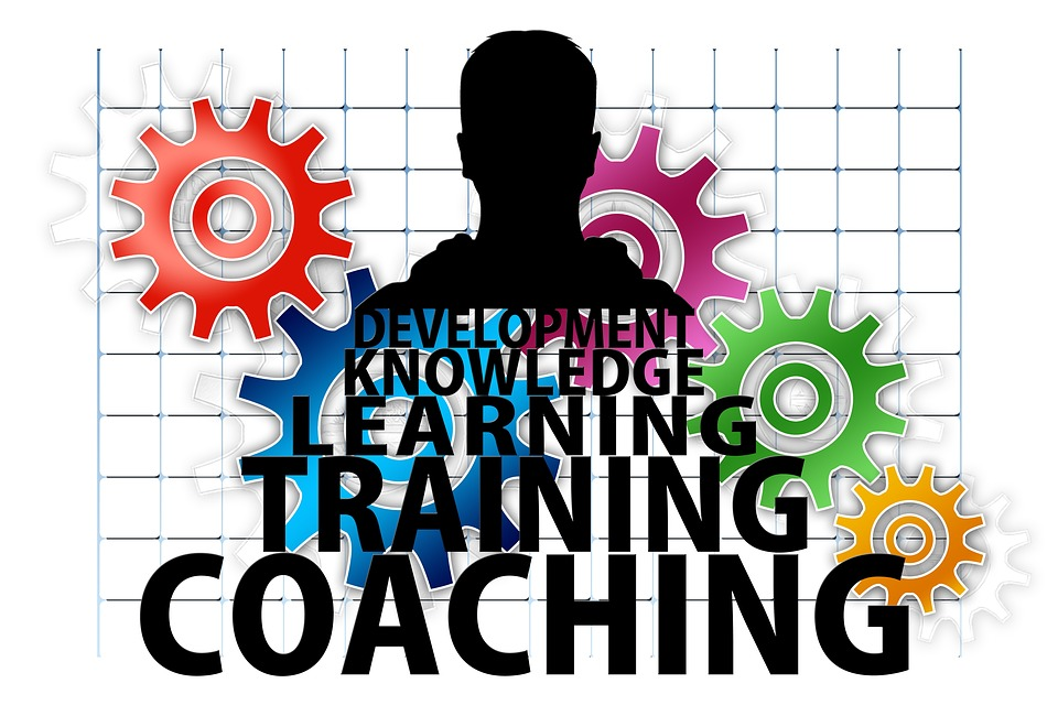Importance of Training and Development in the Workplace