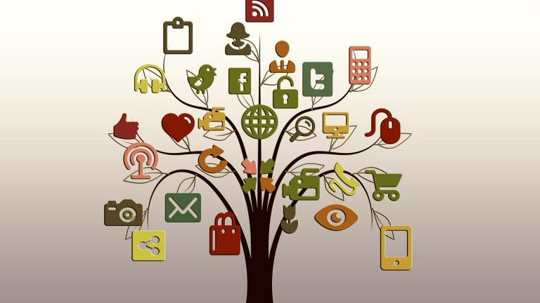 Social software development