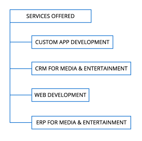Media and Entertainment Software development